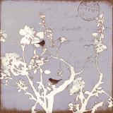 Song Birds VII Kunst von Amy Melious