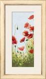 Mountain Poppies II Pôsters por Shirley Novak