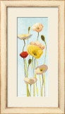 Just Being Poppies III Posters by Shirley Novak