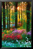 Flower Forest Prints