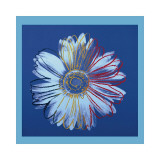 Daisy, c.1982 (Blue on Blue) Giclee Print by Andy Warhol