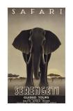 Serengeti Giclée-tryk af Steve Forney