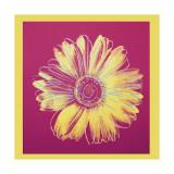 Daisy, c.1982 (Fuchsia and Yellow) Impression giclée par Andy Warhol
