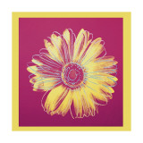 Andy Warhol - Daisy, c.1982 (Fuchsia and Yellow) - Giclee Baskı