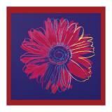 Andy Warhol - Daisy, c.1982 (Blue and Red) Digitálně vytištěná reprodukce