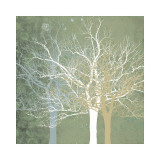 Quiet Forest Giclée-tryk af Erin Clark
