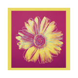 Daisy, c.1982 (Fuchsia and Yellow) Lmina gicle por Andy Warhol
