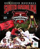 University of South Carolina 2010 NCAA College Baseball World Series Champions Composite Photo