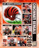 2010 Cincinnati Bengals Team Composite Photo