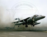 AV-8B Harrier II United States Marine Corps Photo