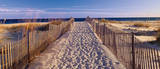 Pathway to the Beach Art by Joseph Sohm