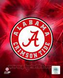 University of Alabama Crimson Tide 2010 Logo Photo
