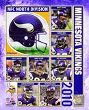 2010 Minnesota Vikings Team Composite Photo