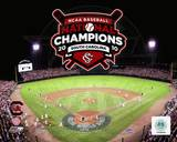 University of South Carolina 2010 NCAA College Baseball World Series Champions Photo