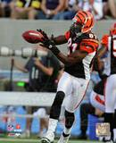 Terrell Owens 2010 Action Photo