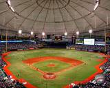 Tropicana Field 2010 Photo