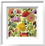 Nasturtiums Limited Edition Framed Print by Kim Parker