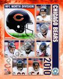 Buy 2010 Chicago Bears Team Composite