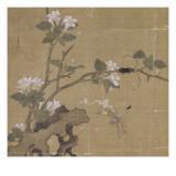 Album Giclee Print by Shian Xu