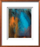 Abstracted Fruit V Limited Edition Framed Print by Sylvia Angeli