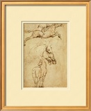 Sketch of a Horse Prints by Leonardo da Vinci 