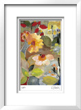 Waterlilies Limited Edition Framed Print by Kim Parker