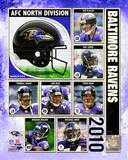 2010 Baltimore Ravens Team Composite Photo
