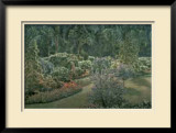 Arboretum Pathway Limited Edition Framed Print by Carson Gladson