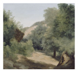A Nemi : le chemin au soleil Gicl&#233;e-Druck von Pierre Henri de Valenciennes