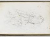 Album : Deux ts de lie Impression giclée par Eugene Delacroix