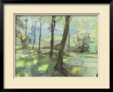 People's Park Limited Edition Framed Print by Tatara