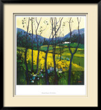 Springtime Galloway Limited Edition Framed Print by Davy Brown