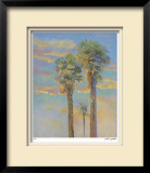 Palm Springs Sunset II Limited Edition Framed Print by David Harris