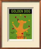 Golden Dog Limited Edition Framed Print by Ken Bailey