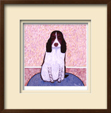 Patience - Springer Spaniel Limited Edition Framed Print by Ken Bailey