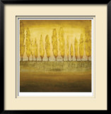 My Backyard I Limited Edition Framed Print by Jensen