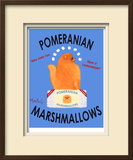 Pomeranian Marshmallows Limited Edition Framed Print by Ken Bailey