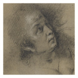 Femme en buste Lámina giclée por Bernardo Strozzi
