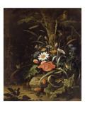 Fleurs, oiseaux, insectes et reptiles Lámina giclée por Abraham Mignon