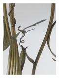 Floor Lamp Up Decorated with Reeds and Dragonflies Giclee Print