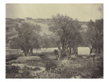 Jardin des Oliviers près de Jérusalem Giclee Print by James Robertson