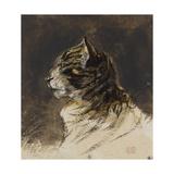 T de chat ; vers 1824-1829 Giclee Print by Eugene Delacroix