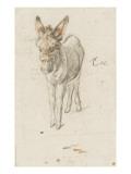 Âne Giclee Print by Charles Le Brun