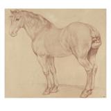 Cheval debout, tourné vers la gauche Giclee Print by Edme Bouchardon