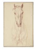 Cheval vu jusqu'aux avant-bras de face Giclee Print by Edme Bouchardon