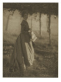 Camera Work July.1908 : the Arbor Giclee Print by Clarence White