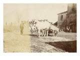 Cart Drawn by Two Oxen and a Peasant in the Farmyard Giclee Print