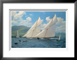 Queen's Cup Limited Edition Framed Print by Steven Dews