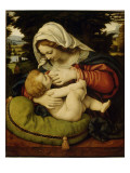 La Vierge au coussin vert Giclee Print by Andrea Solario