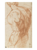 Homme nu, vu à mi-corps, de dos Giclee Print by  Andrea del Sarto